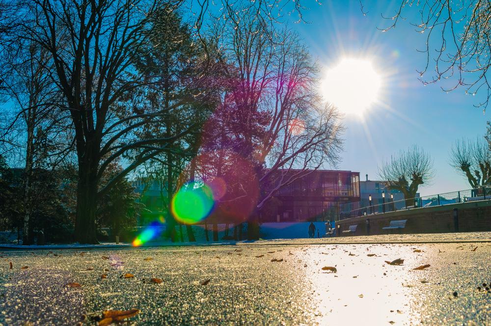 Winterlicher Kurpark in Bad Vilbel I/II