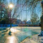 Winterlicher Kurpark in Bad Vilbel II/II