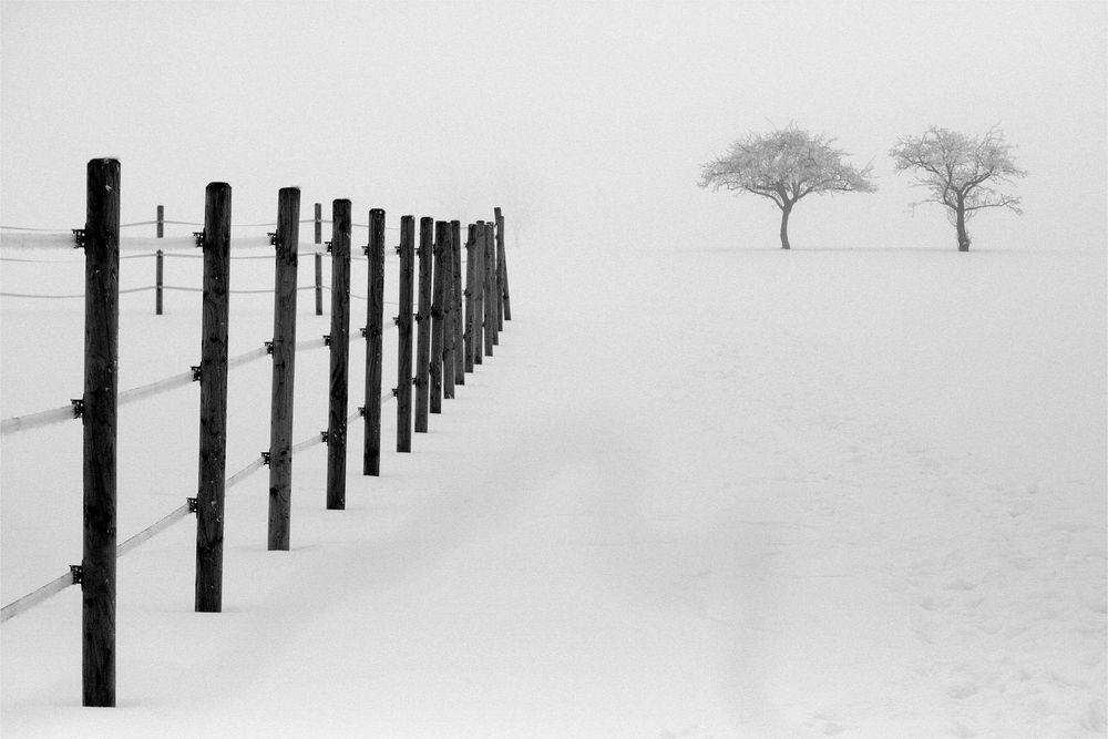 Winterlicher Minimalismus