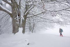 Winterlicher Start ins neue Jahr