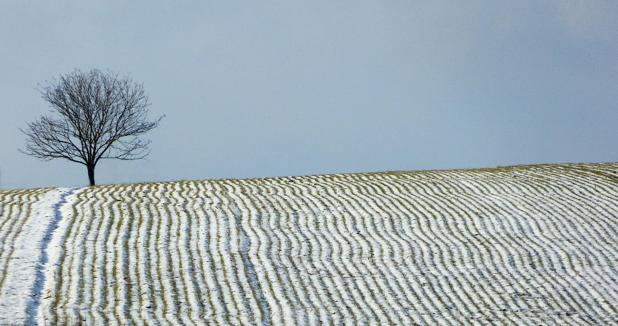 Winterlicher Streifenlook