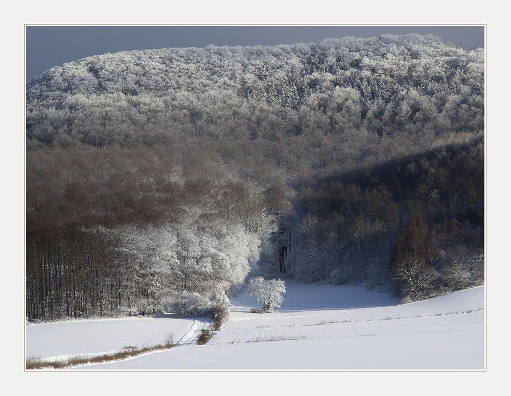 Winterliches aus dem Weserbergland am 5. Jan. 2009