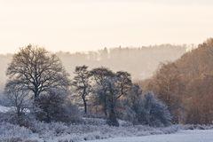 Winterliches Tal