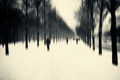 winterliches Treiben