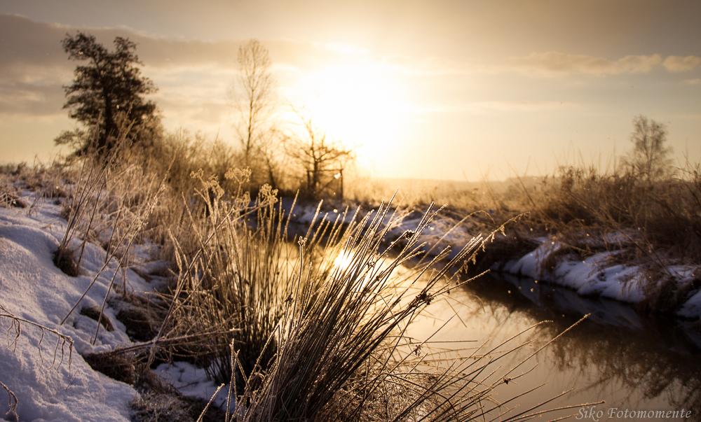 * Winterlicht *