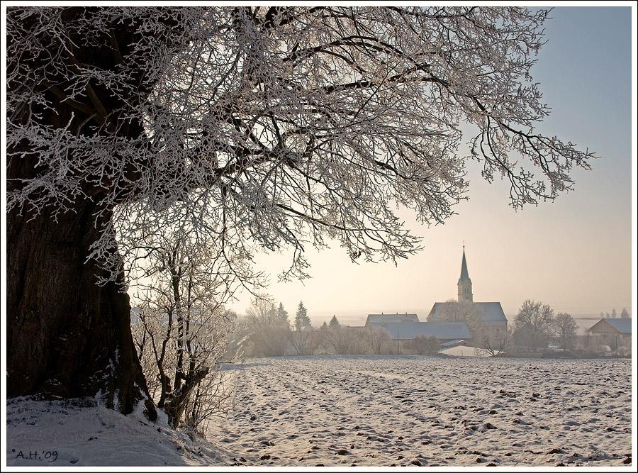 Winterlich(t) (8)