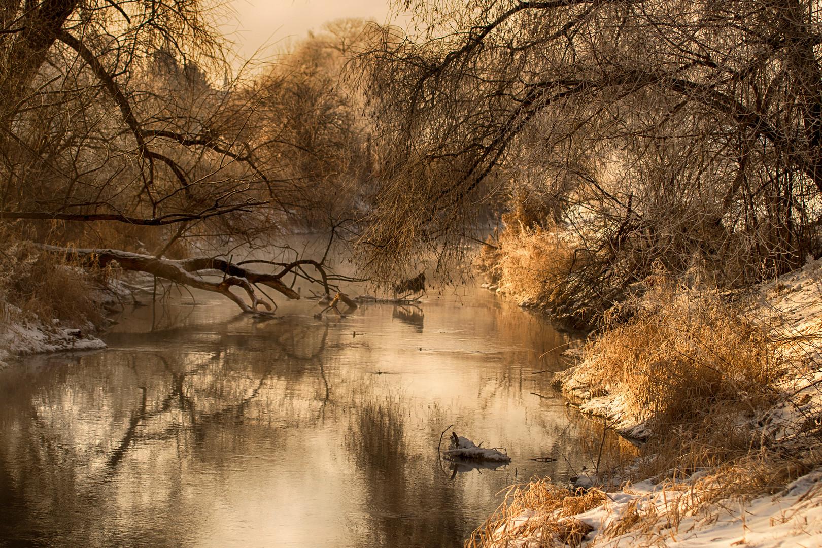 ..WinterLicht..