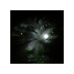 Winterlichter 1