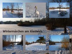 Wintermärchen am Kiesteich