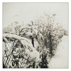 Wintermärchen II