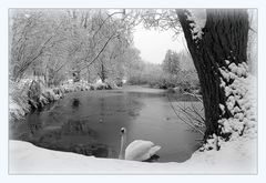 Wintermärchen im Park