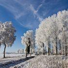 Wintermärchen V