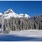 wintermärchenlandschaft II