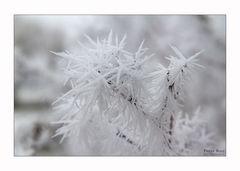 Wintermalerei......