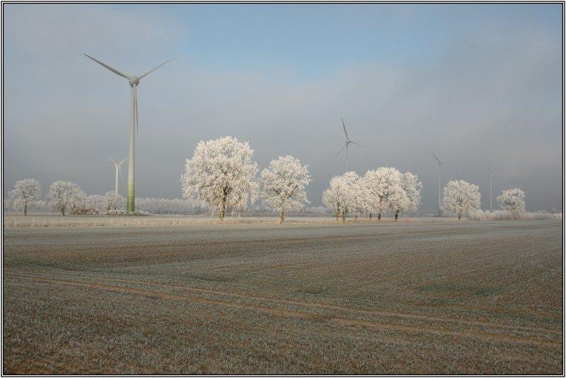 Wintermorgen 5