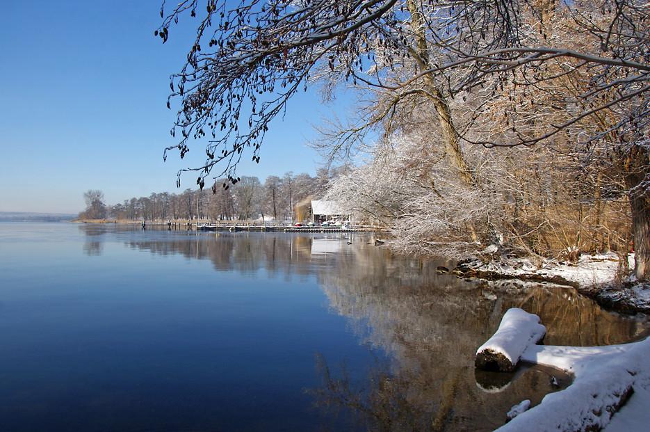 Wintermorgen im Gutspark, 17.02.09 – 06