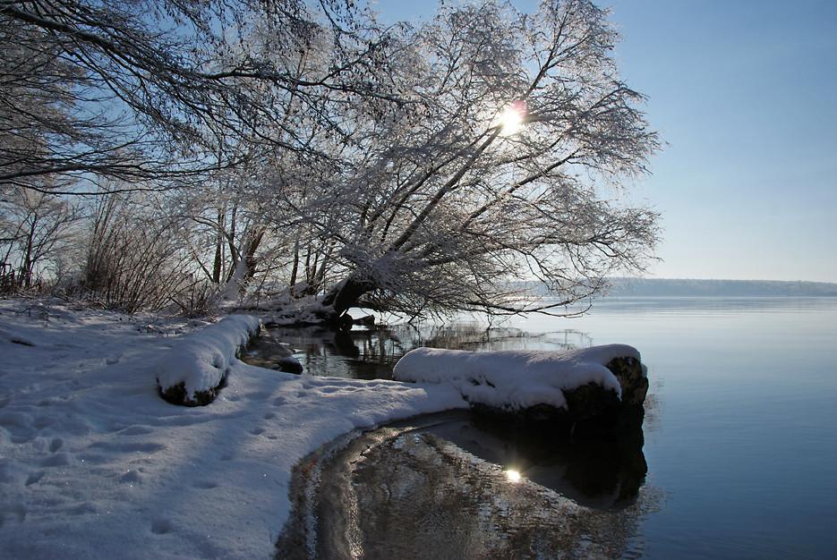 Wintermorgen im Gutspark, 17.02.09 – 07