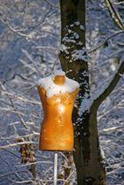 Wintermorgen im Gutspark, 17.02.09 – 12