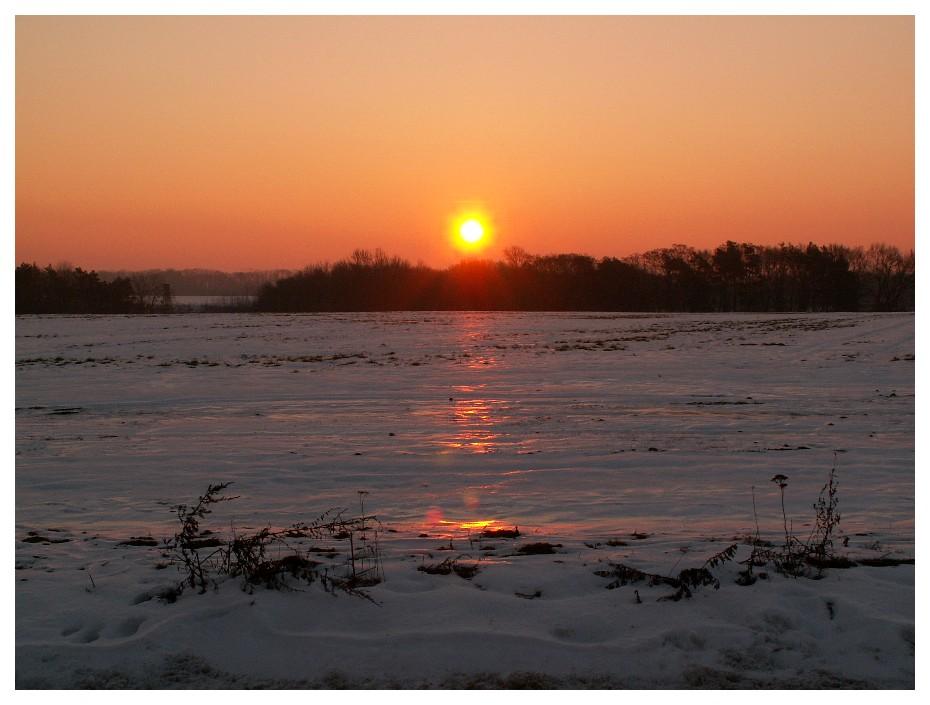 Wintermorgen im Oderland bei minus 21°C