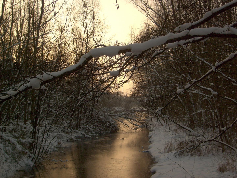 Wintermorgengrauen am Johannisbach