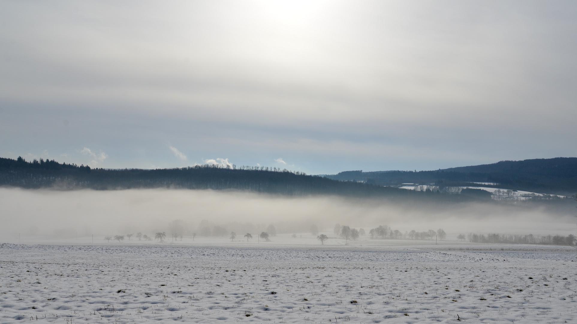 Wintermorgennebel