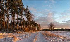 Winternachmittags-Licht