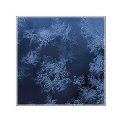 _WinterNacht _