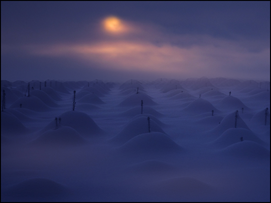 winternacht,,,,