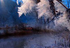 Winternacht im Mondesschein