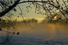 Winternebel ...
