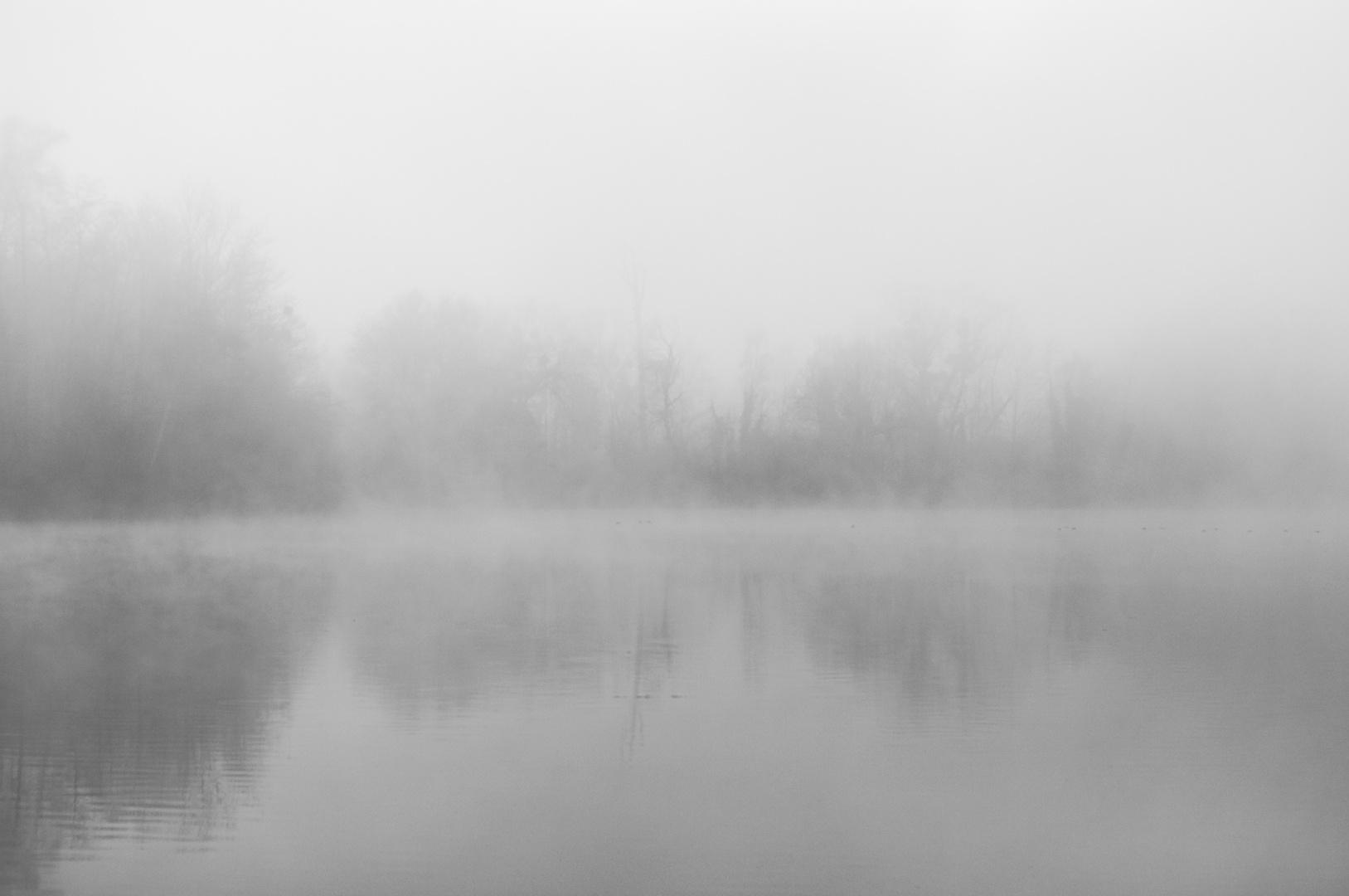 Winternebel am Groschenwasser