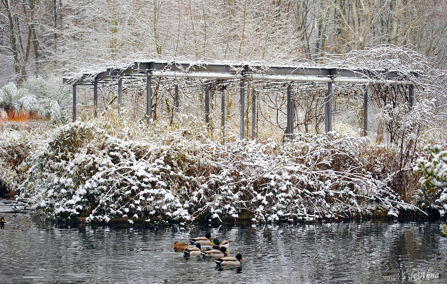 Winternostalgie
