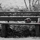 Winterparty