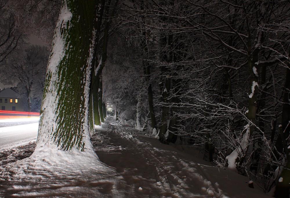 Winterromantik am Straßenrand