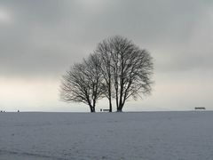 Winterruhe ...