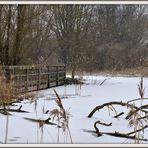Winterruhe am Altmühlsee