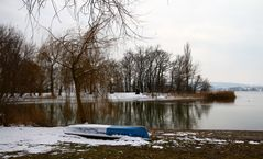 Winterruhe am Bodensee I
