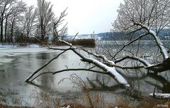 Winterruhe am Bodensee II