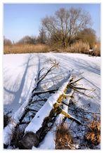 Winterruhe....