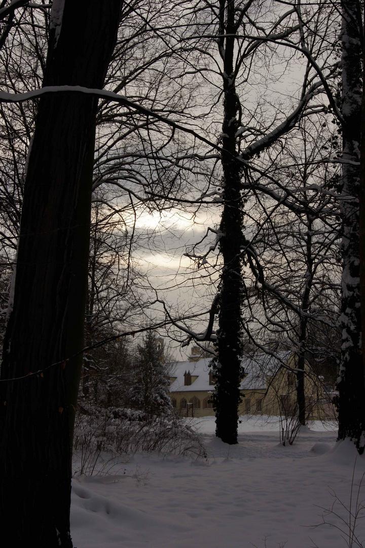 Winterruhe im Park