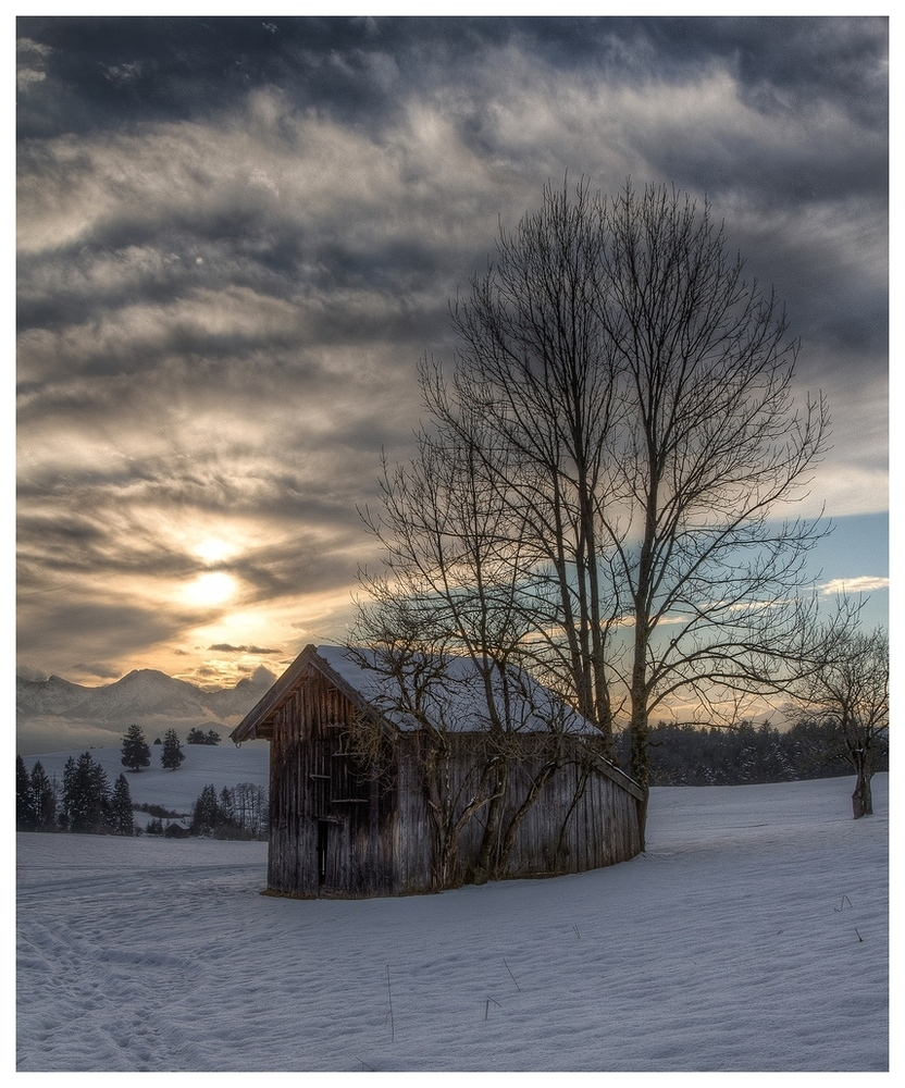 Winters light