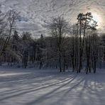 Winterschatten