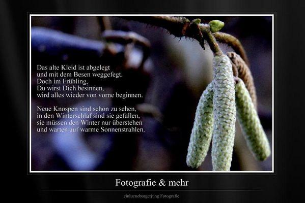 Zitate Fotografie Fotos & Bilder auf fotocommunity