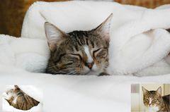winterschlaf ...