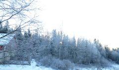 Wintersclaf