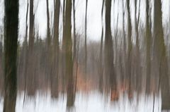 Winterseele # 6406 #