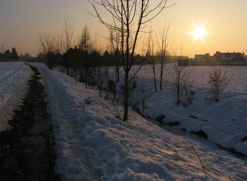 Wintersonne 04