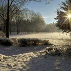 Wintersonne im Niederzierer Park