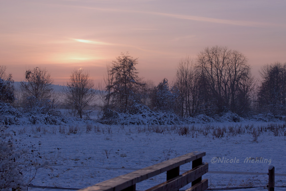 Wintersonnenuntergang