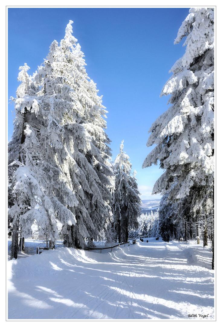 Winterspaß.....